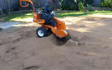 Stump Grinding Services in sydney